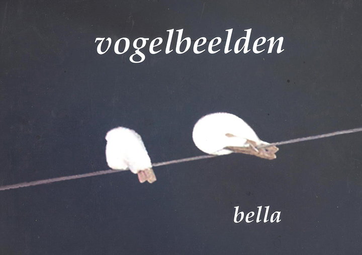 Vogelbeelden